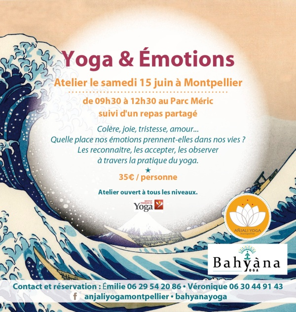 stage yoga montpellier