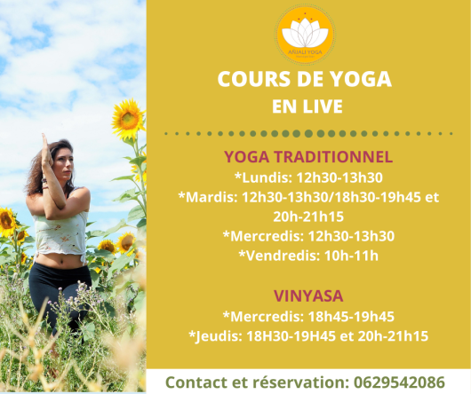 Cours yoga live Montpellier